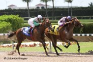 Awesome Feather (FL) wins 2 for 2 in the JJ's Dream Stakes